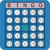 Game Classic Bingo Touch
