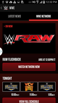 game-wwe-sport-free-download-2