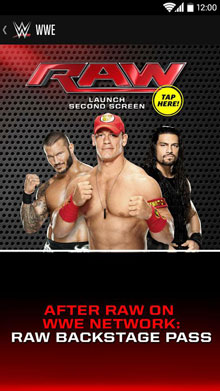 game-wwe-sport-free-download-3