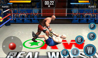 game-real-wrestling-3d-free-download-2