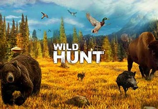 Wild Hunt 4Sport Hunting Games